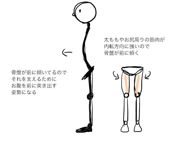 腰椎前弯の説明